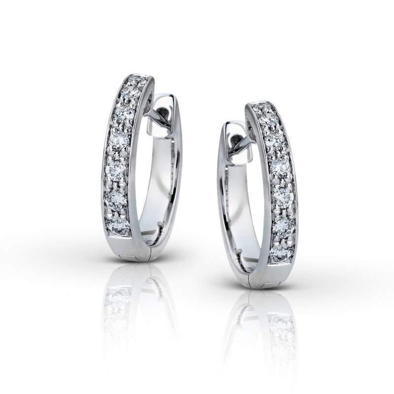 Paparazzi 14k White Gold Hoop Earrings